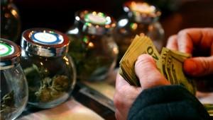 cannabis jobs, Jobs in Cannabis Continue to Skyrocket