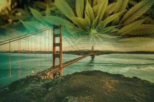 california cannabis, Recreational Marijuana Sales Begin in California Jan. 1