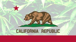 california marijuana, California Marijuana Industry Faces Regulation Woes