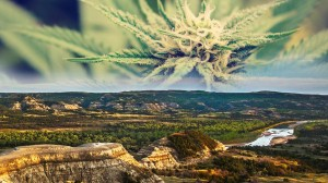 , North Dakota Could Legalize Marijuana Without Limits on Growth or Possession
