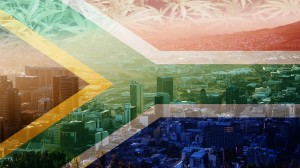 , South Africa Legalizes Recreational Cannabis Use