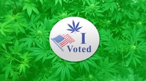 , Cannabis at the Ballot Box: Which States Will Legalize?