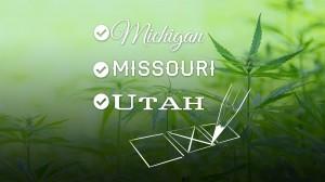 , Marijuana Wins Big in Midterm Elections