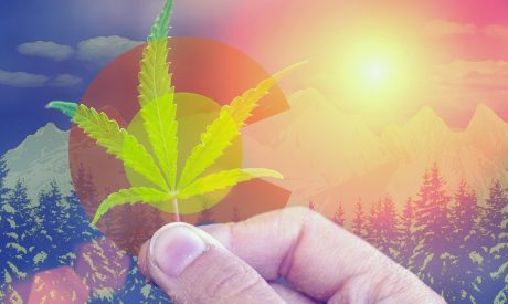 Colorado Marijuana Laws Coming to the 2021 Ballot