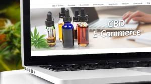 CBD eCommerce, Should I Start a CBD eCommerce Business Website?