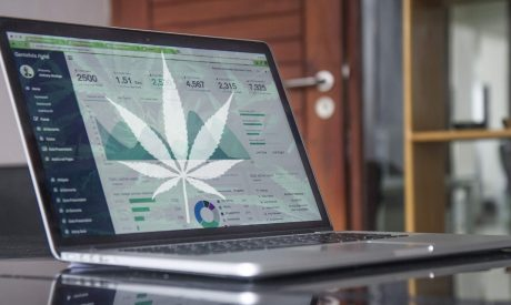 5 Reasons Why Your Cannabis Website is Falling Behind