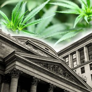 , Colorado Unveils 'Roadmap to Banking' for Cannabis Industry