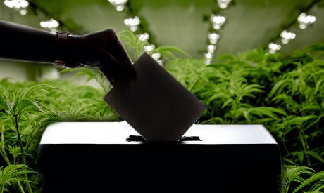2020 Election: Cannabis Legalization Results