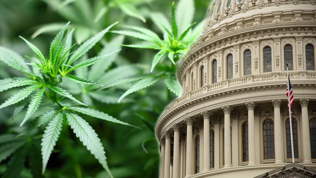 , U.S. House of Representatives Votes to Legalize Marijuana