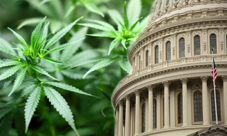 U.S. House of Representatives Votes to Legalize Marijuana