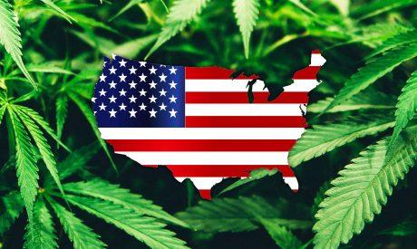 Chuck Schumer, Democrats move to legalize marijuana nationwide in 2021