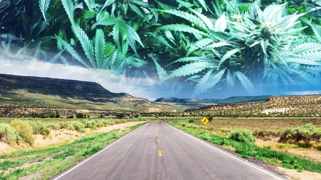 , New Mexico's Governor to call special session for marijuana legalization bill
